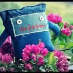Corny duerme entre las flores